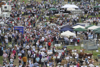 Trade Exhibitors - Tullamore Show 2015