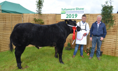 tullamore-show-11-th-aug-2019-049
