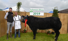 tullamore-show-11-th-aug-2019-059