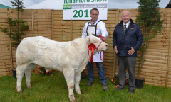 tullamore-show-11-th-aug-2019-061