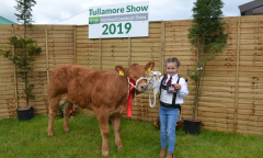 tullamore-show-11-th-aug-2019-073