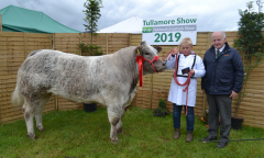 tullamore-show-11-th-aug-2019-105