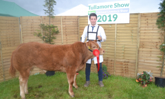 tullamore-show-11-th-aug-2019-182
