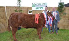 tullamore-show-11-th-aug-2019-325