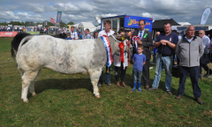 tullamore-show-2018-12-th-aug-189-large-