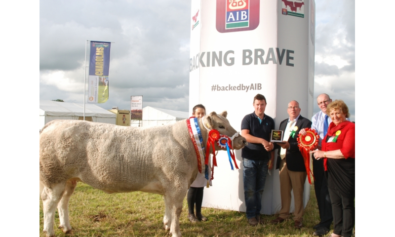 206-36.aib-senior-commercial-champion-with-handler-michelle-owner-michael-martin-moate-michael-dolan-commercial-cattle.rodney-cox-show-chairman-freda-kinnarney-show-secretary.1200.0.0.0.t