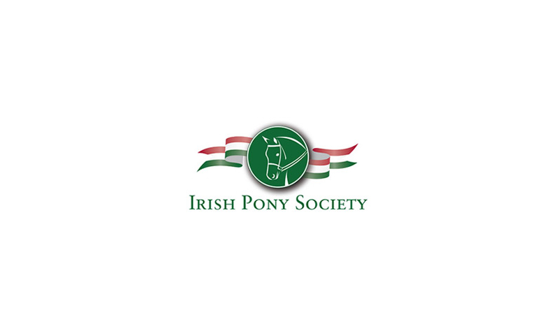irish-pony-1