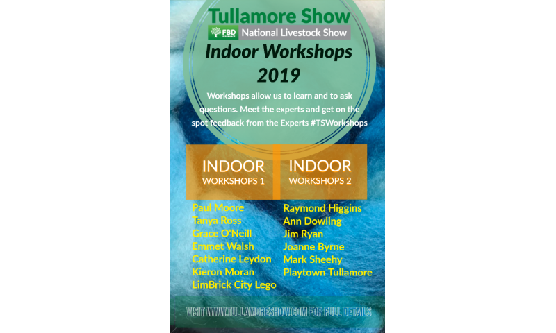 tullamore-show-indoor-workshops