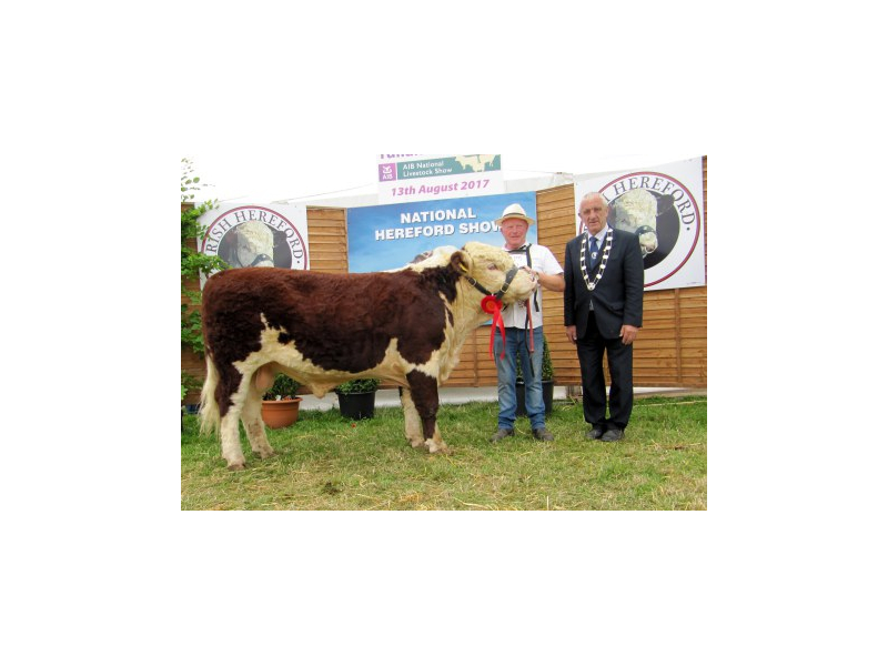 105-bull-calf-champion-kye-manhatten-757-with-owner-padraig-mcgrath-and-ihbs-president-pat-mccarthy.jpg
