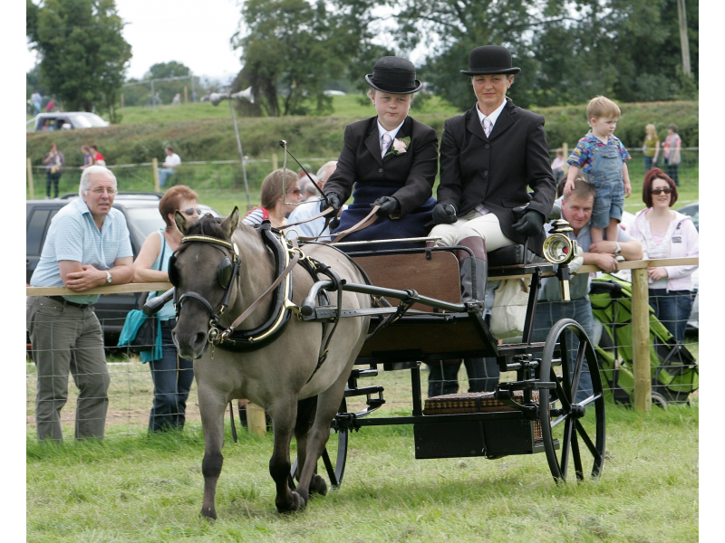 2010-tullamore-show-ger-059