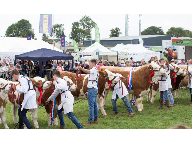 agricultural-shows-ireland-1-1