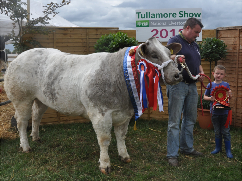 fbd-national-lilvestock-show-commercial-senior-champion-brian-dyer-kilmorris-co.mayo