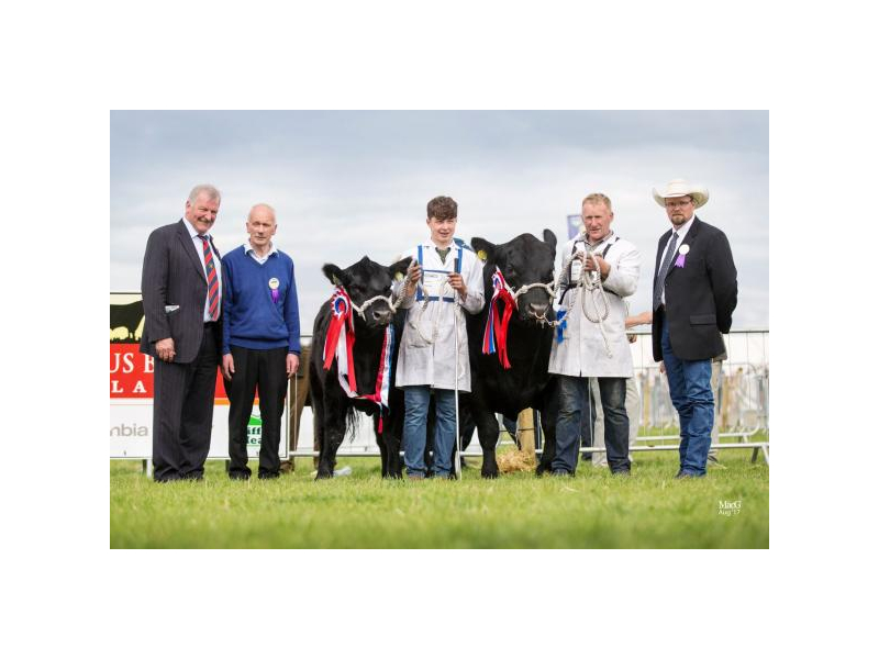 junior-angus-champion-tullamore-2017.jpg