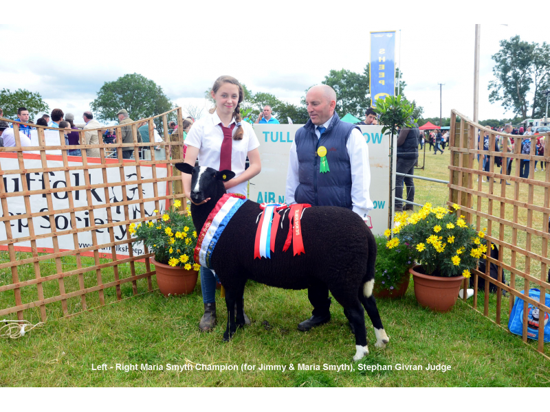 zwartbles-champion-2