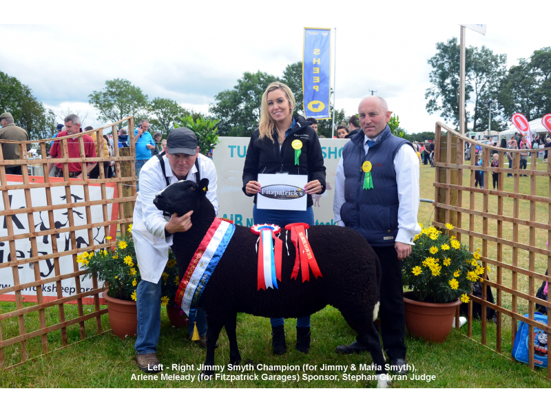 zwartbles-champion